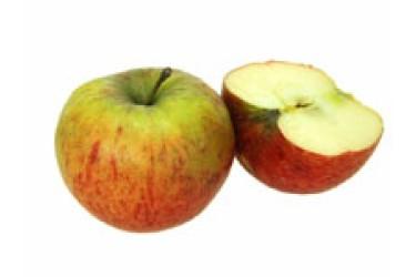 Biologische Appel Maribelle (1 kilo)