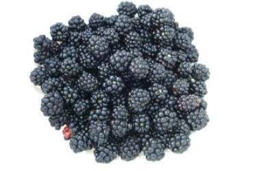 Biologische Bramen (125 gram)