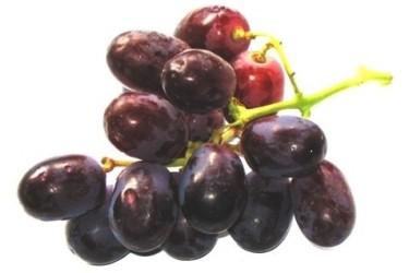 Biologische Druiven Blauw (400 gram)