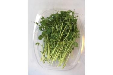 Erwtenscheuten Voordeelverpakking (EKONOOM Microgroenten, 100 gram)