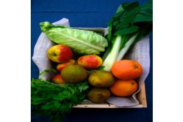 Biologisch Groente & Fruit Pakket - Mini Combi
