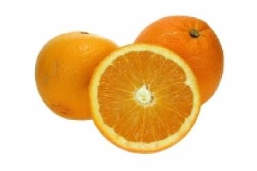 Biologische Hand Sinaasappel Navelina (1 kilo)
