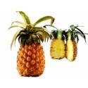 Biologische Ananas (per stuk)