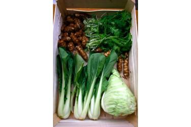 Biologisch Groentepakket - Groot
