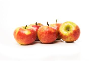 Biologische Appel Elstar (2 kilo)