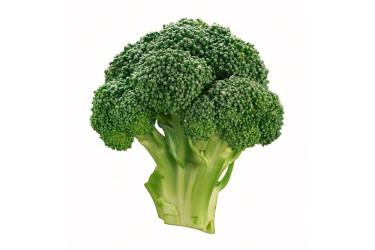 Biologische Broccoli (per stuk, 400-500 gram)