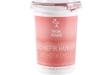 Biologische Rauwe Kefir Hangop (Rauw Power, 500 ml)