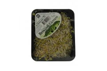 Biologische Kiemen Broccoli (75 gram)
