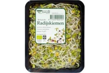 Biologische Kiemen Radijs (75 gram)