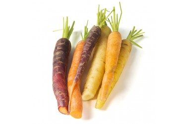 Biologische Regenboog wortelmix (500 gram, uit de Noordoostpolder)