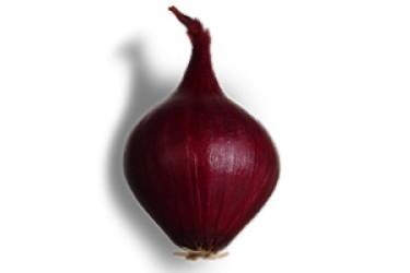 Biologische Uien Rood nieuwe oogst (500 gram)