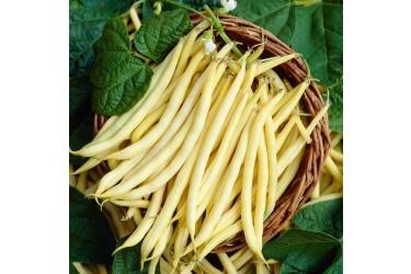 .Sperziebonen geel (250 gram, EKONOOM Groenteteelt, Noordwolde GN)