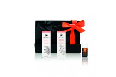 Odylique Timeless Rose Travel Set (per stuk)