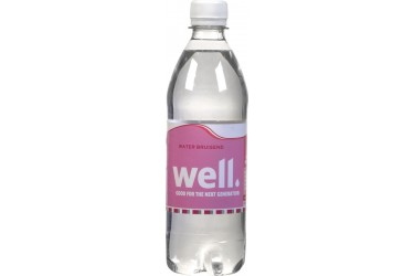 Mineraalwater Met Koolzuur (Well, 500 ml)*